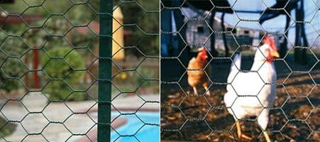 Poultry Netting-Chicken Wire-Chicken Fencing-Bird Wire Mesh-Aviary Mesh-Protect Poultry with Wire Netting
