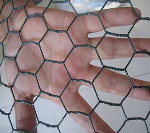Anping Wire Mesh-Plastic Chicken Wire