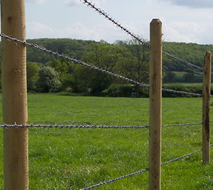Barbed Wire Fence-Double twist barbed wires