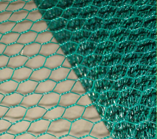 Chicken Fence-Poultry Netting