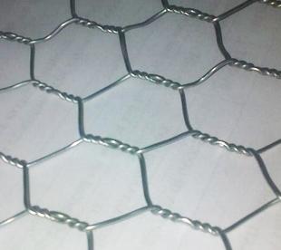 Chicken Net-Galvanized Hexagonal Wire Mesh-Poultry Netting