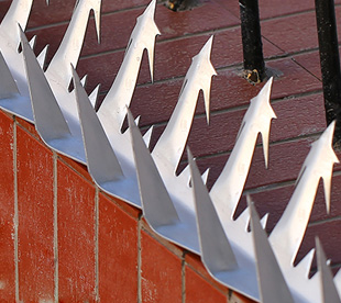 Wall Spikes Security-Galvanized Wall Spikes