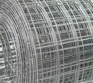 Hardware-Cloth-Galvanized-Welded-Wire-Mesh