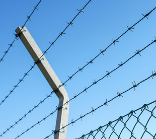 Barbed-Wire-Factory-Gi-Barbed-Wire-Hot-Dip-Galvanized-Barbed-Wire