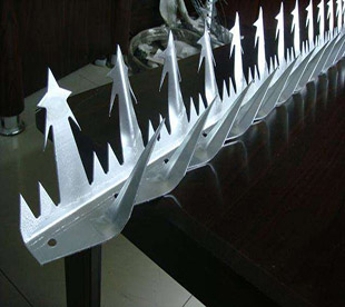 Security-Spikes-For-Walls-Security-Fence-Top-Spikes